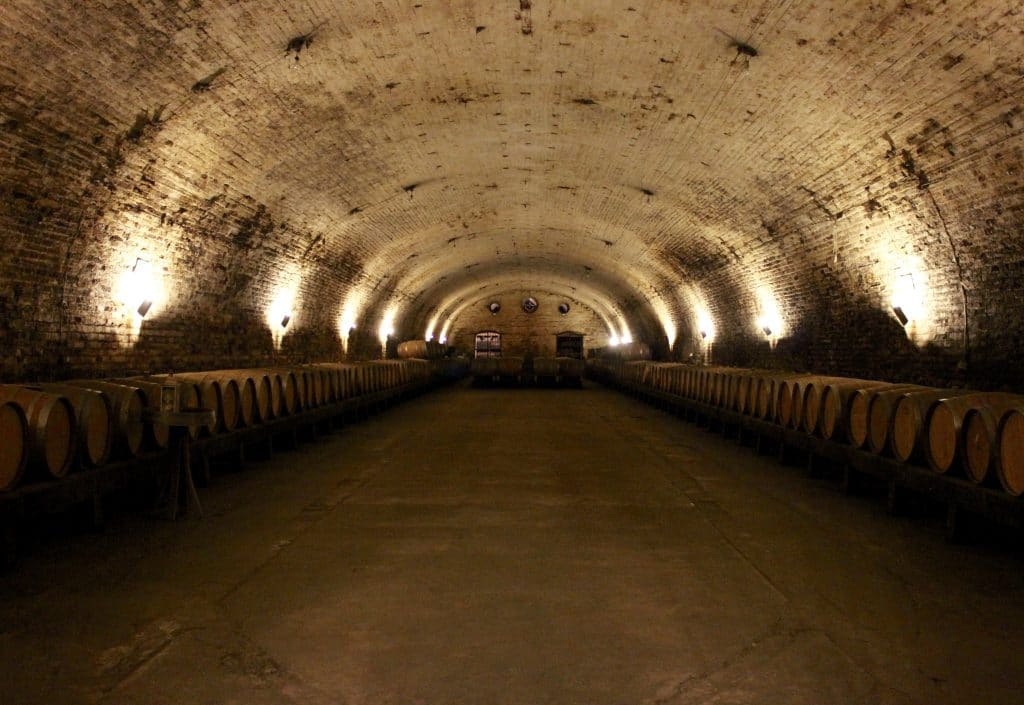 Reconnaissance of the Chilean wine industry affected by the 2010 Chile offshore Maule earthquake