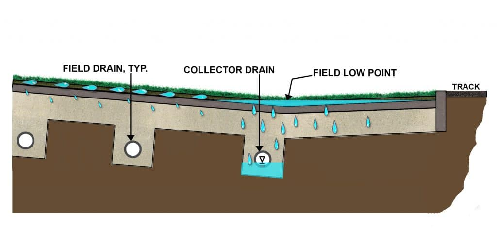 Artificial turf field drainage elements